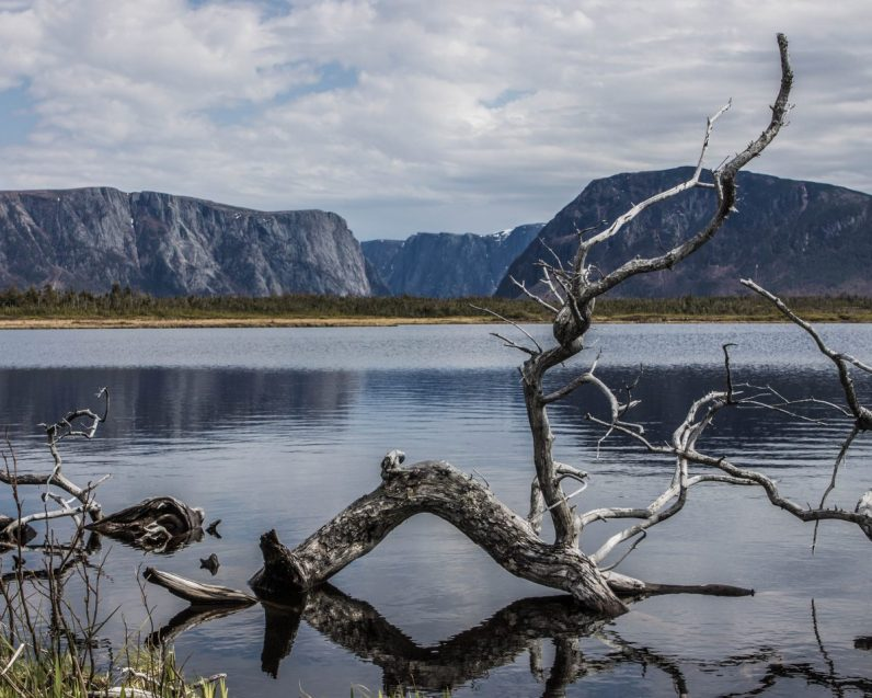 Log in the waters at Western Brook Pond in Gros Morne National Park one of our bucket list destinations in Canada.