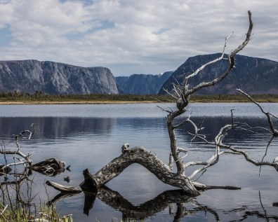 The cliffs of Western Brook Pond from the lowlands boardwalk - Newfoundland Viking Trail