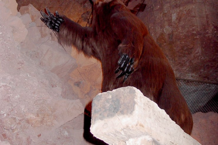 Arizona---Grand-Canyon-Caverns-Giant-Sloth