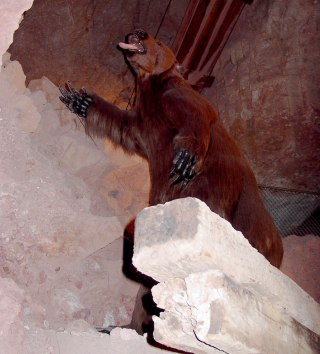 A stuffed giant sloth that once fell into the Grand Canyon Caverns - Caves you can visit with kids