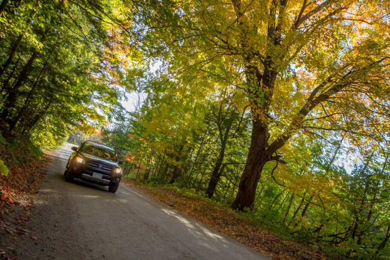 An SUV driving down a quiet road is one of the fun fall activities in Ontario, Canada.