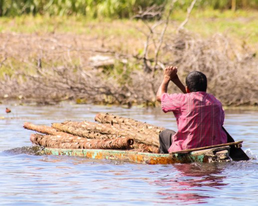 Local man uses a raft to transport logs on the New River in Belize.
