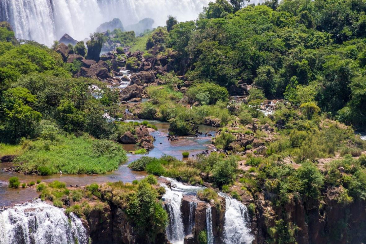 San Martin Island as seen from Iguazu Falls Brazil is teeming with bird life.