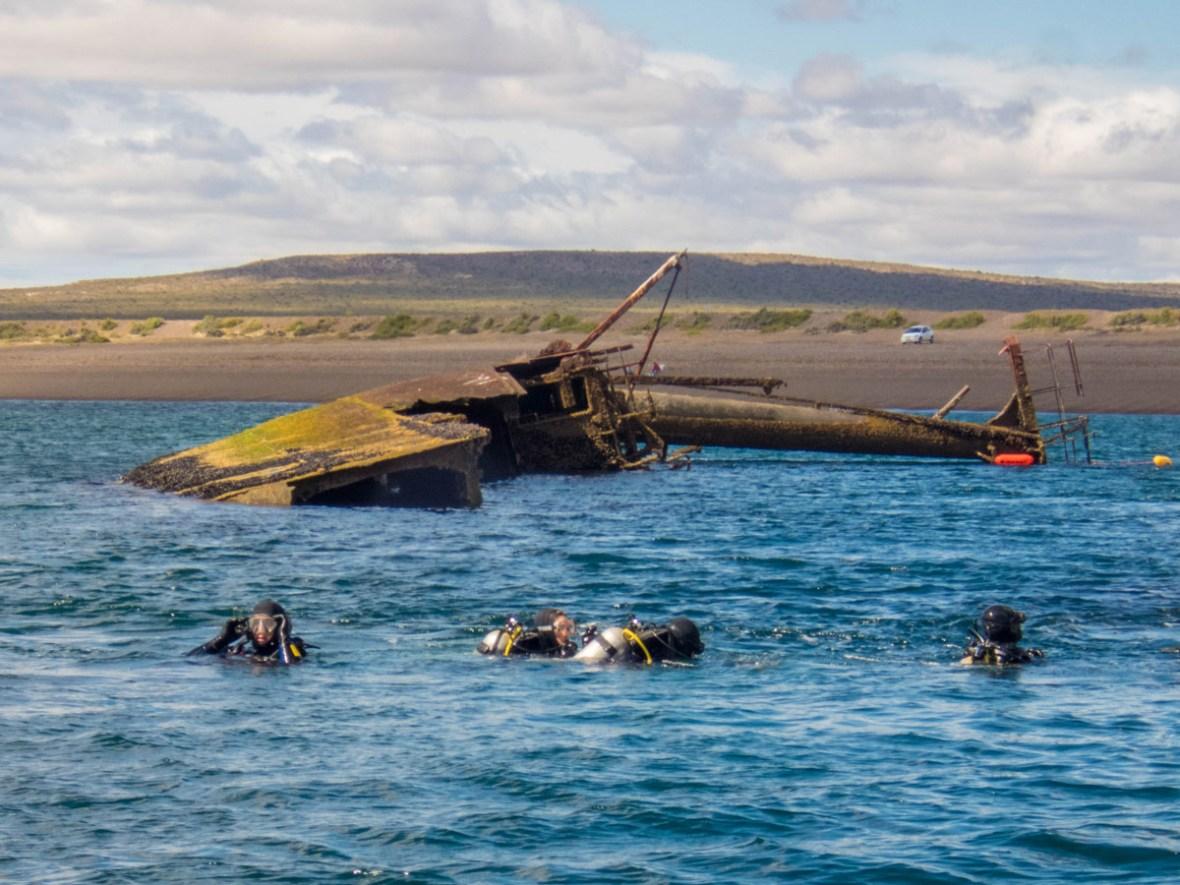 SCUBA divers explore the shipwreck Miralles near Punta Loma Argentina