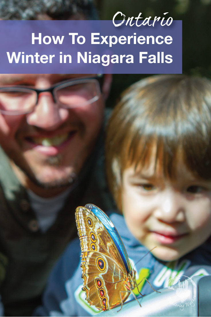 Amazing ways to spend winter in Niagara Falls with kids. From frozen waterfalls, aviary's, shows and waterparks. Niagara Falls in the winter is a great family destination