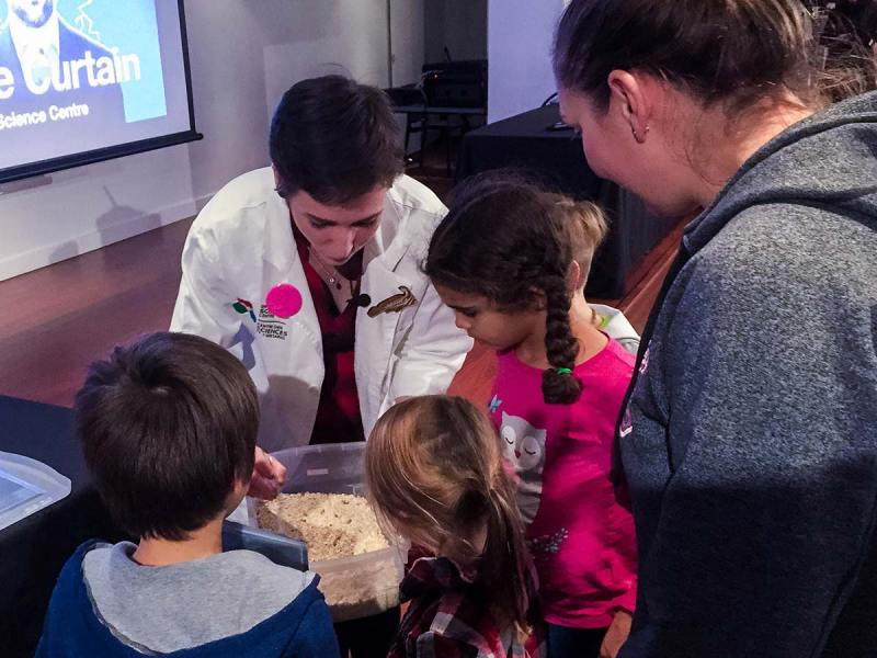 Dining on mealworms and crickets with the Ontario Science Centre at Brain Candy Live