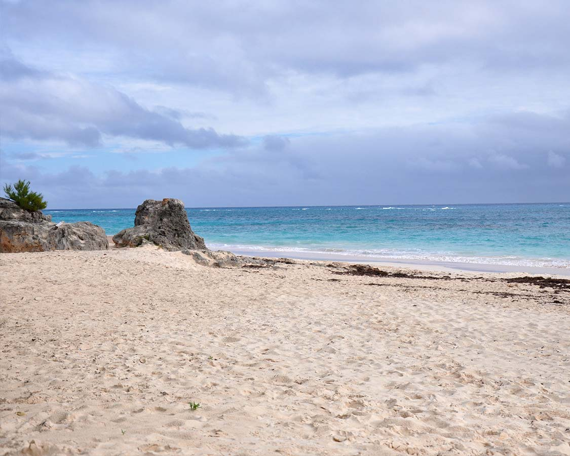 Best Bermuda Beach Elbow Beach Bermuda Rock Formations