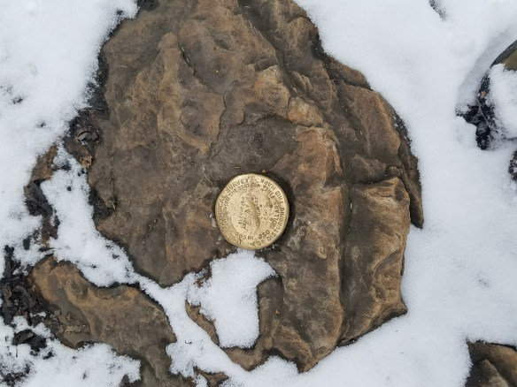 USGS brass benchmark found on hike