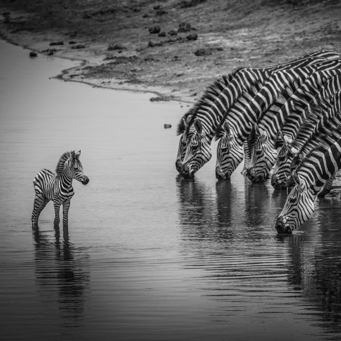 Mudumu Nat'l Park, Namibia