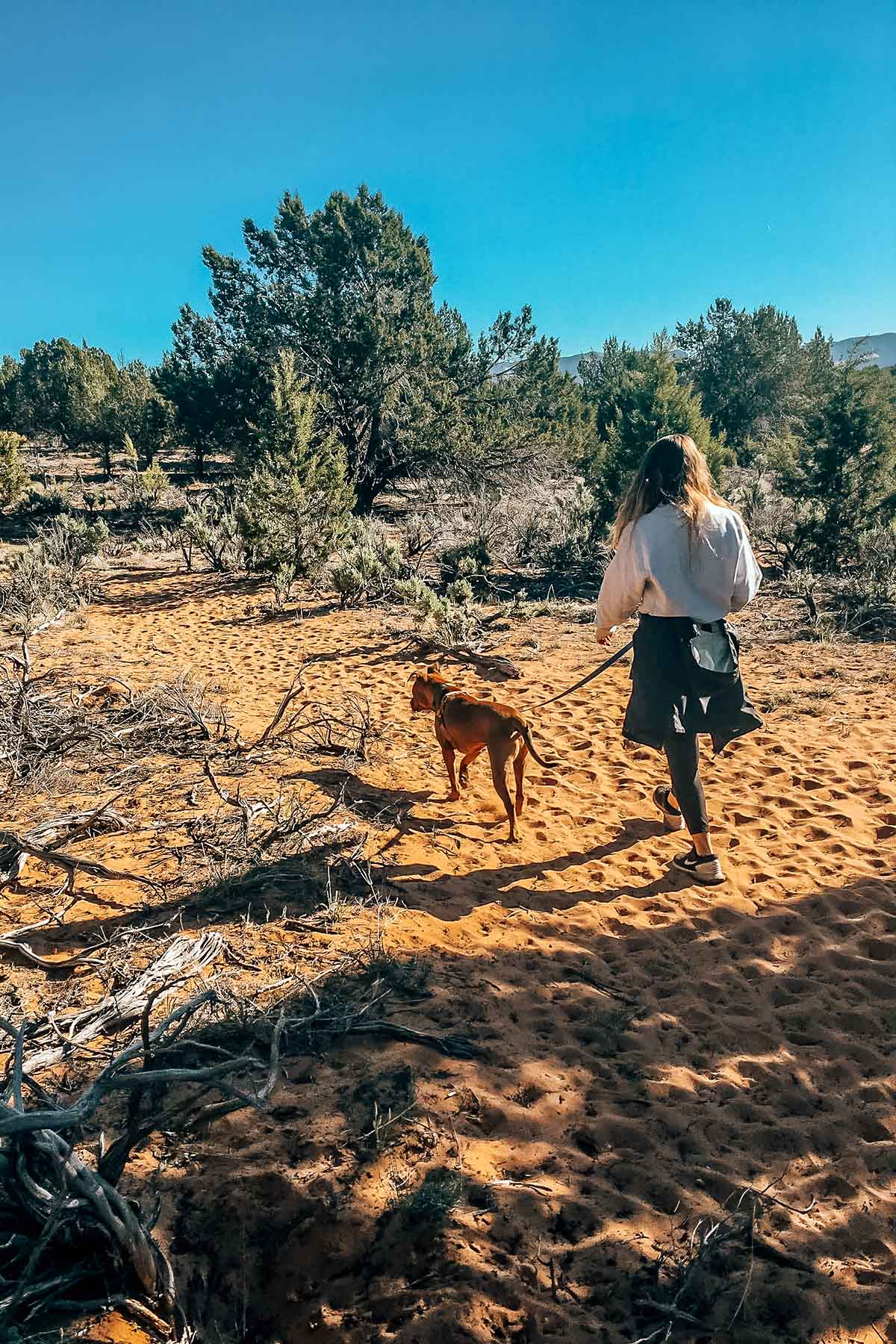 Hannah walking a Best Friends Animal Society rescue dog while at the Sanctuary in Utah