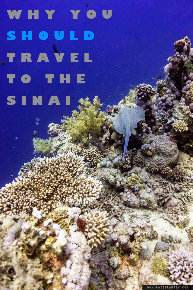 WHY YOU SHOULD TRAVEL TO THE SINAI