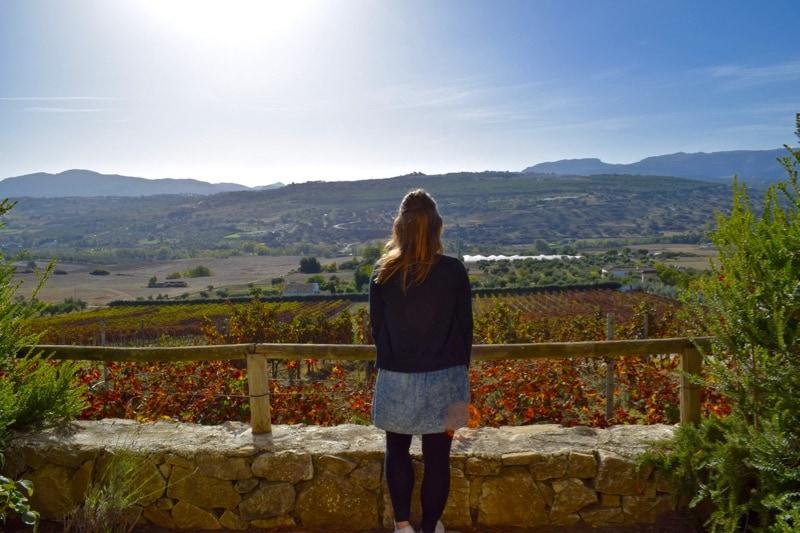 Winery - Bodega Joaquín Fernández, Ronda, Spain