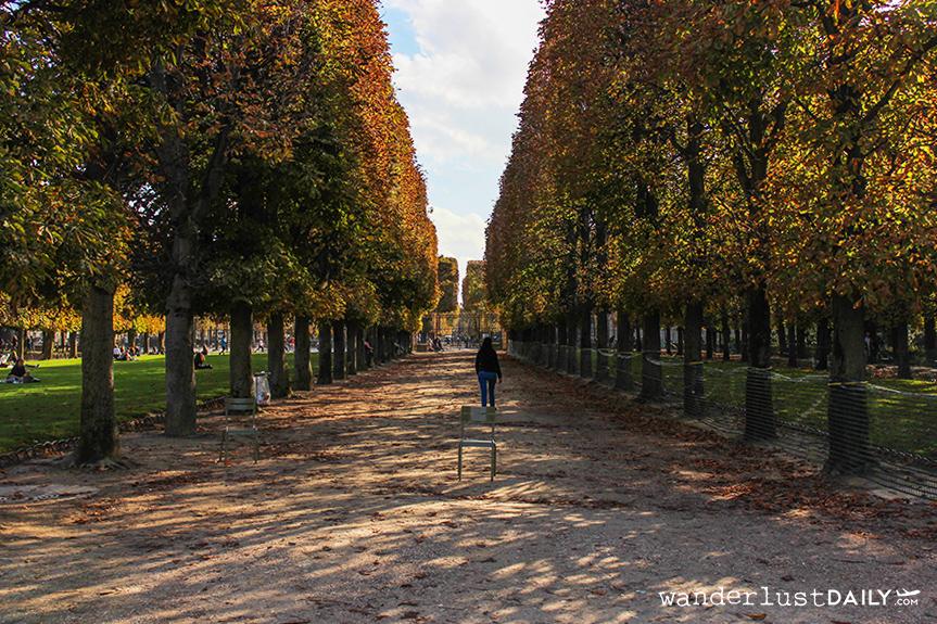 Autunno ai Jardin du Luxembourg