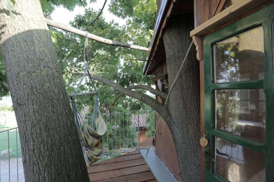 case sull'albero in Italia