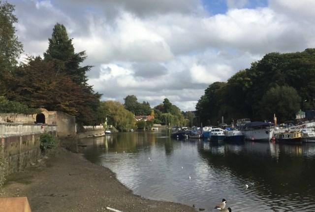The River Thames, Twickenham