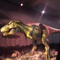 The roaring T-Rex at the Natural History Museum