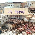 Morocco Fes - City Tripping