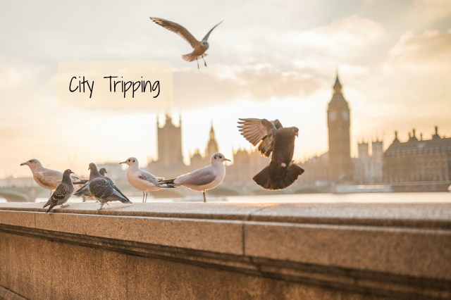 City Tripping travel linky London