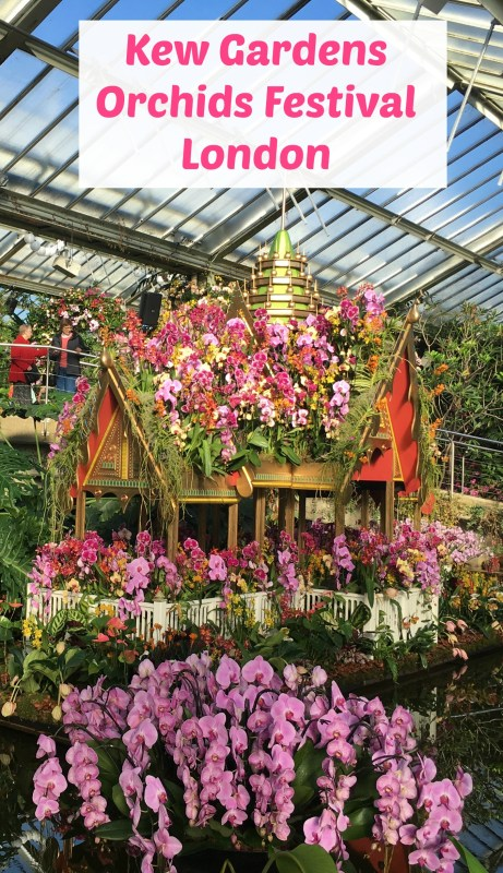 Kew Gardens Orchids Festival, London: Why visit and what's to see?
