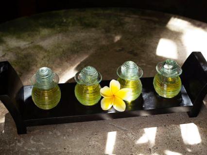 Bali Sekar Jepun Spa  Wandernesia