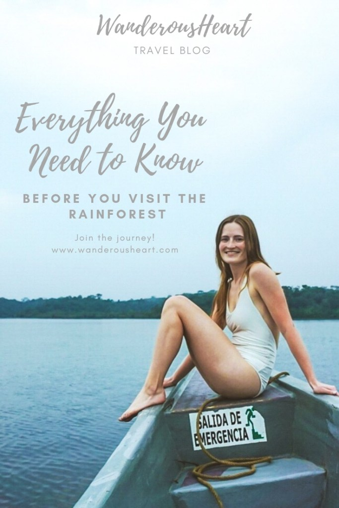 Everything You Need to Know Before You Visit the Rainforest