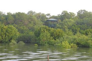 dr salim ali bird park