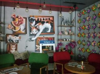 cute cat themed cafe kuching