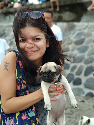 cute dogs bali