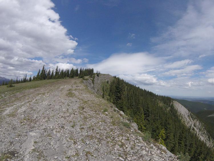 An image of the Prairie Mountain trail near the summit