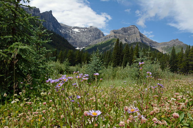 An image of the mountains in Peter Lougheed Provincial Park