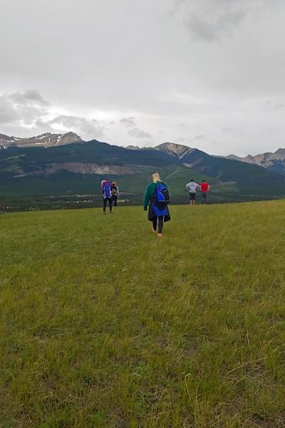 Image of Siffleur Meadow