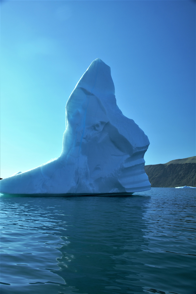 Image of an iceberg that looks like a face - iceberg pareidolia test