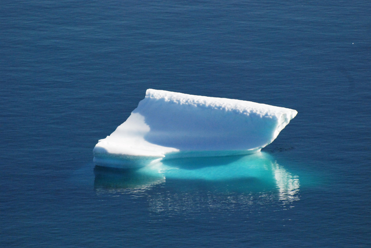 Image of an iceberg that looks like a grand piano - iceberg pareidolia test