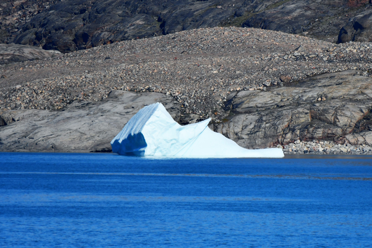 An image of an iceberg that looks like a woodpecker - iceberg pareidolia test