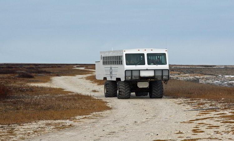 An image of a tundra buggy used for Churchill polar bear tours near Churchill, Manitoba