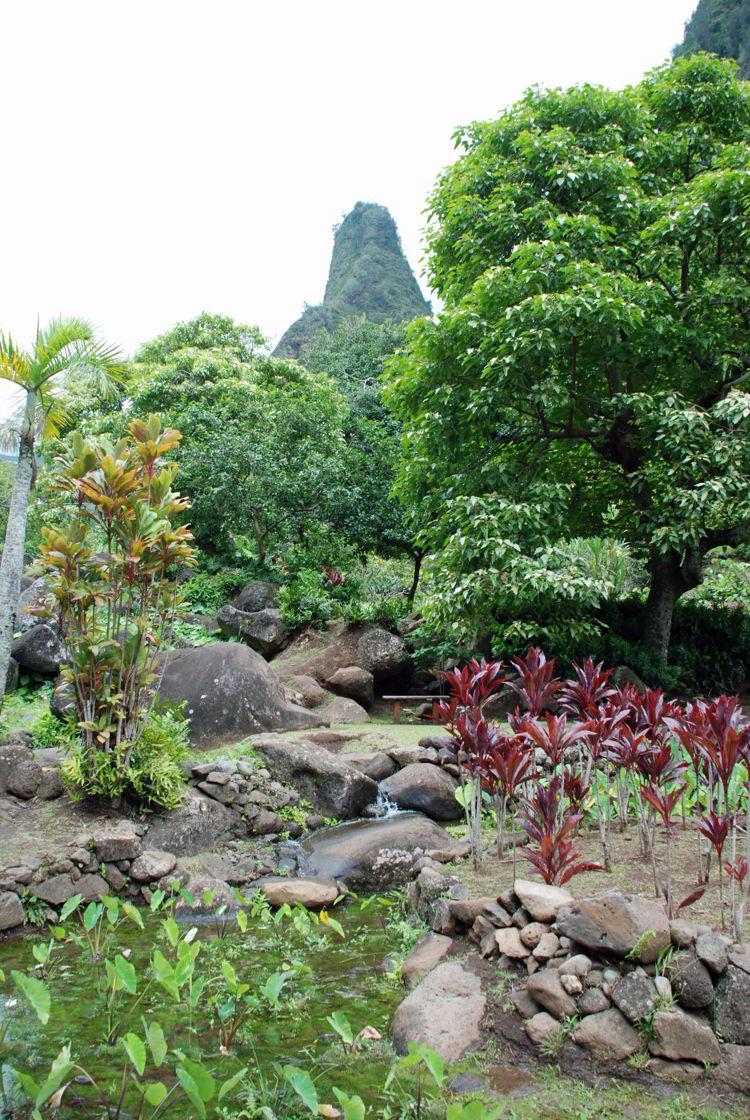 An image of ʻĪao ValleyState Park in Maui, Hawaii - Hiking Maui