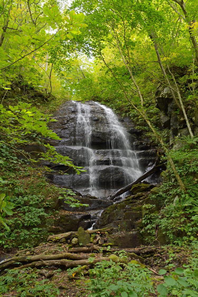 An image of Kudan no Taki Waterfall in Oirase Gorge near Aomori, Japan - Lake Towada and Oirase Gorge