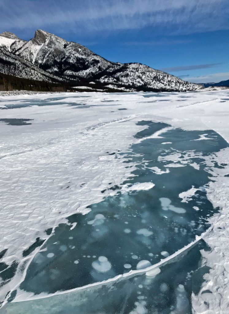 An image of the ice bubbles at Abraham Lake after a fresh snow. Abraham Lake, Alberta