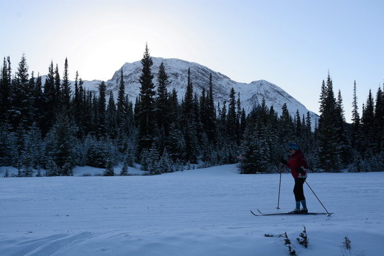 Image of a person cross country skiing at Shark Mountain in Kananaskis Country - Avoid the Winter Blues.