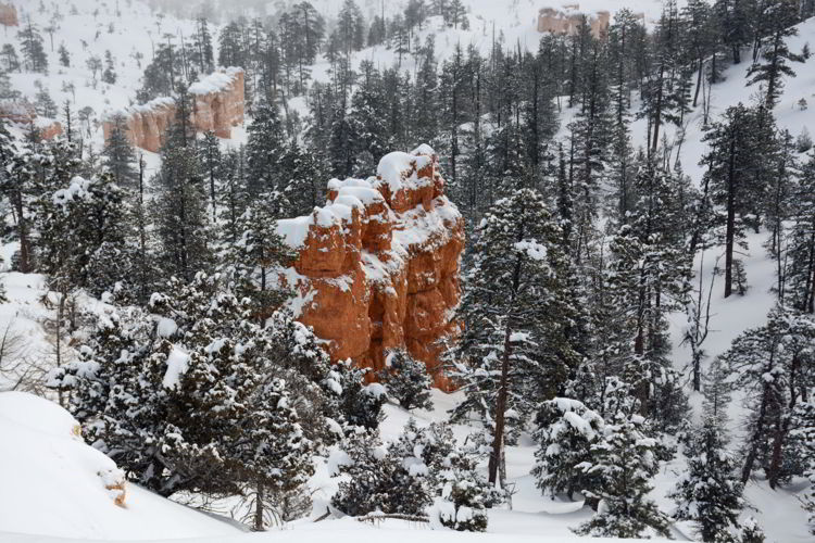 An image of the view from the Rim Trail in Bryce Canyon National Park, Utah - Bryce Canyon in winter