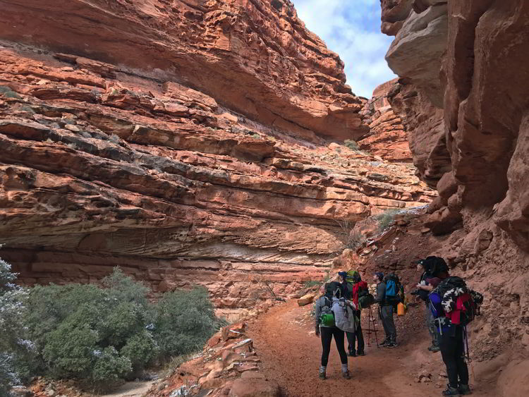 An image of a group of people hiking the Havasupai trail - Havasupai hike.