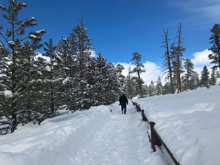 An image of a man hiking up a trail in Bryce Canyon National Park, Utah - Bryce Canyon in winter