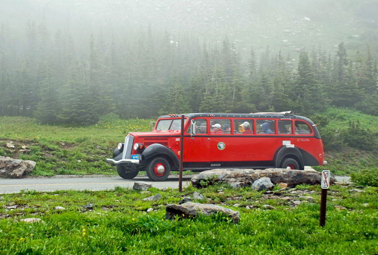 An image of the red bus tours in Glacier National Park.