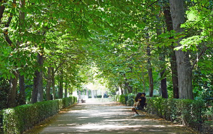 An image of two young lovers kissing on a park bench in Retirio Park in Madrid, Spain - Free things to do in Madrid.