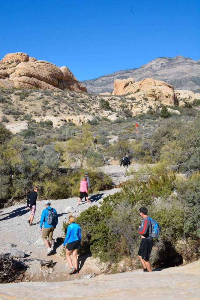 An image of a group of hikers at Red Rock Canyon Conservation Area outside Las Vegas Nevada.