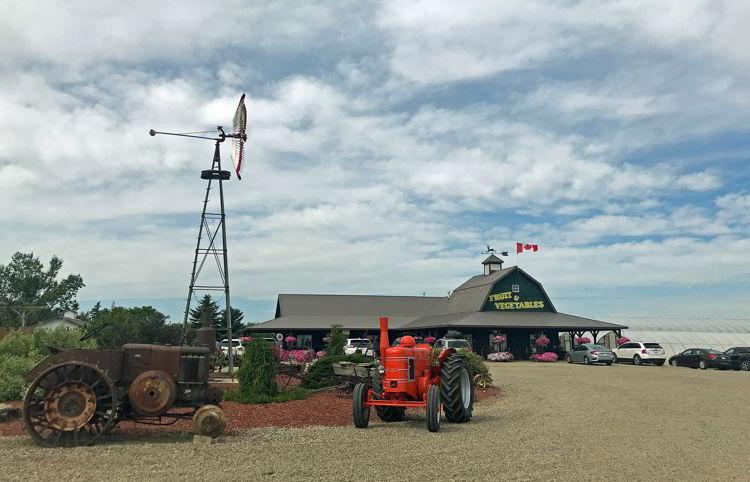 An image of Broxburn Vegetables and Cafe in Lethbridge, Alberta.