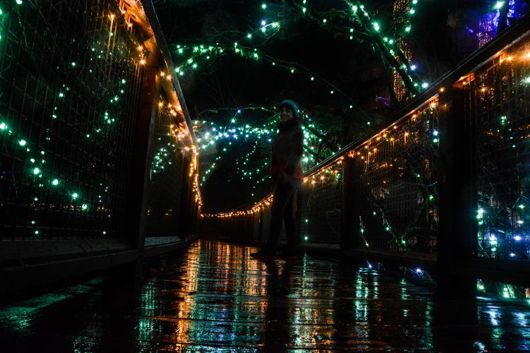 An image of a walkway at Canyon Lights at the Capilano Suspension Bridge in Vancouver, BC, Canada. Christmas lights in Vancouver.