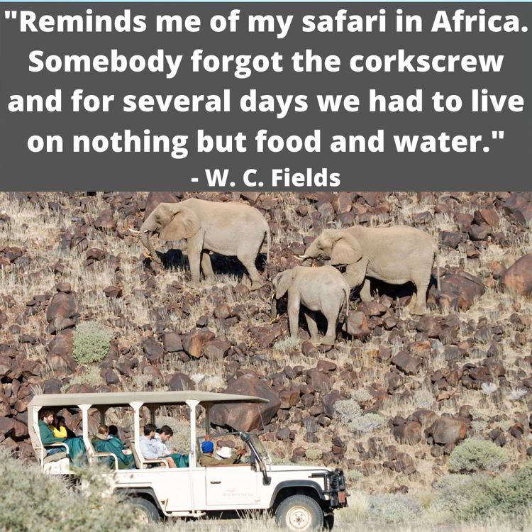 An image with a funny travel quote by W.C. Fields.