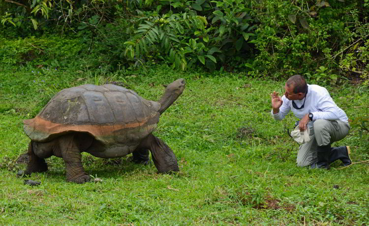 An image of a man and a giant tortoise in the Galapagos islands in Ecuador - travel more and pay less.