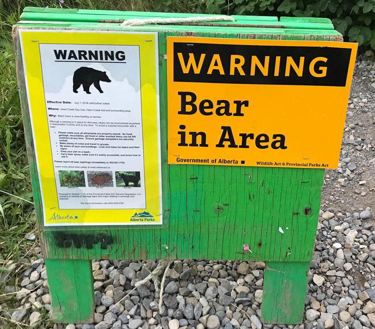 An image of a bear warning sign in Kananaskis, Alberta.